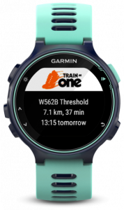 TrainAsONE widget on Garmin 735XT